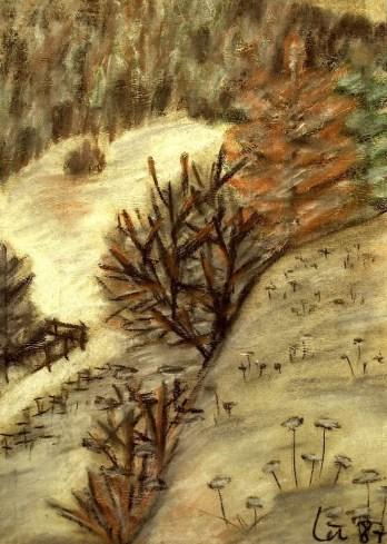 Thr4_Schneetreiben im Deutschen Rod