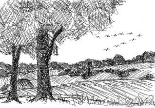 UckerSk12 Landschaft bei Angermuende 2