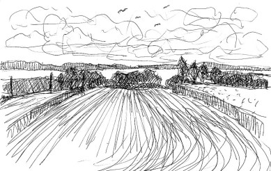 Wittow32-Landschaft bei Nobbin