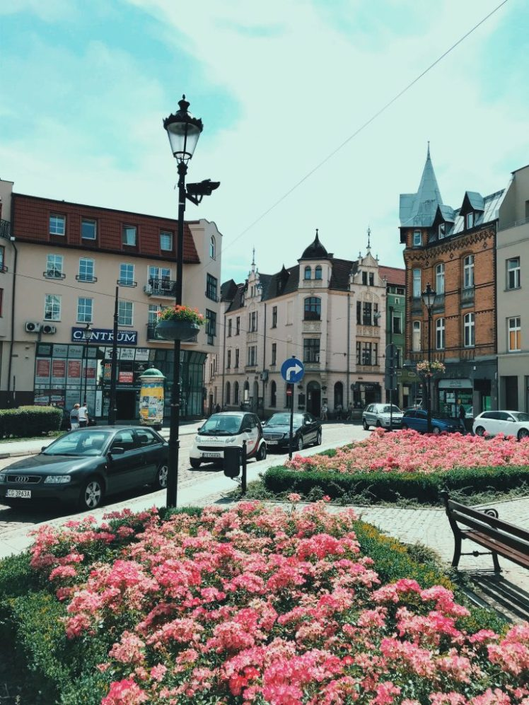 Outside in between the roads in a Polish city. The flowers are blooming against the old buildings that stand tall the other side of the road.