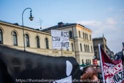 Gegenproteste zum AFD Prteitag - 30.04.201 (6 von 12)