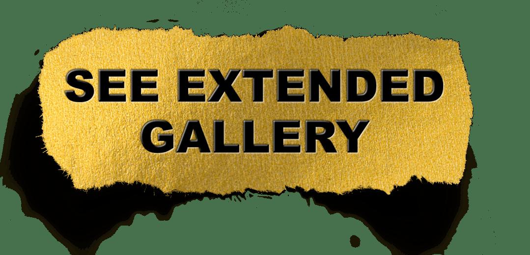 Boudoir Gallery Link Button