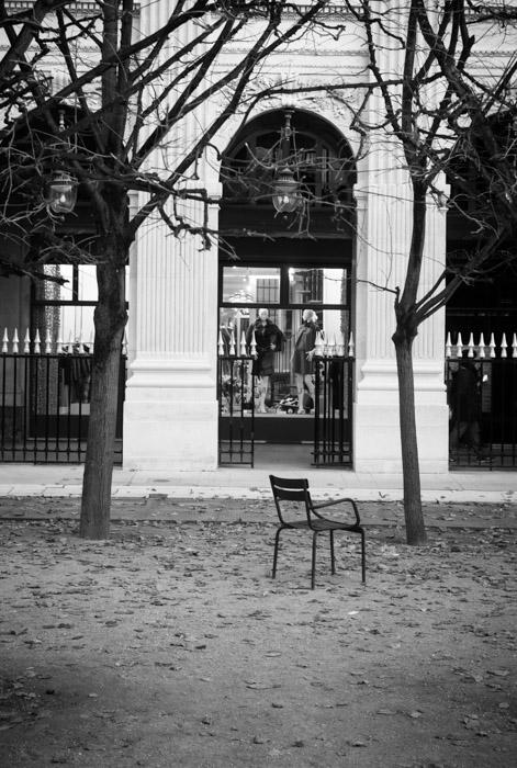Projet 52 - Jardin du palais royal