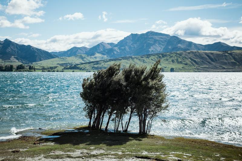 nouvelle-zelande : wanaka