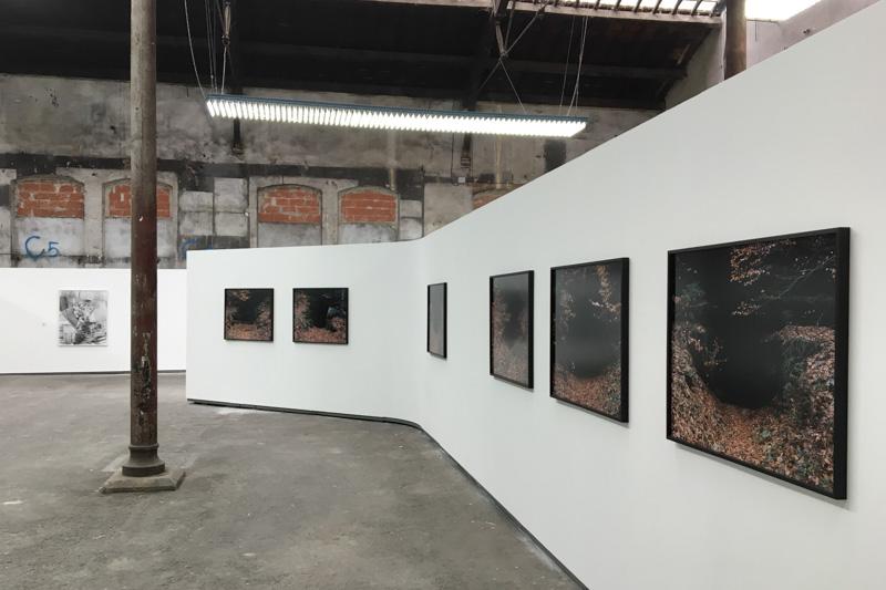 Rencontres photographiques d'Arles
