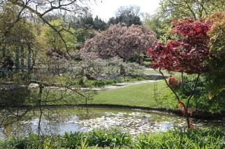 img 0867 Cliveden, a garden visit, part 1