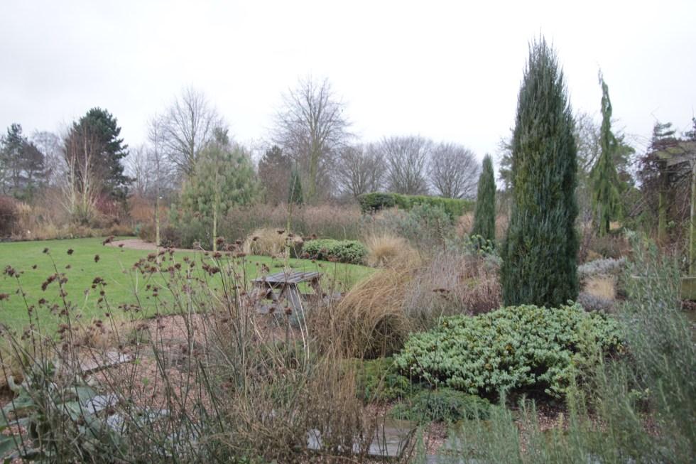 img 4188 Winter at Ellicar Gardens