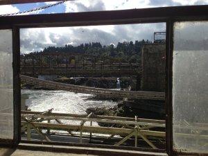 Willamette Falls View