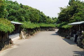 Kasai Rinkai Kōen (葛西臨海公園 - 鳥類園)