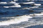 Makuhari Beach (幕張の浜)