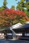 Daiyūzan Saijōji (大雄山最乗寺)