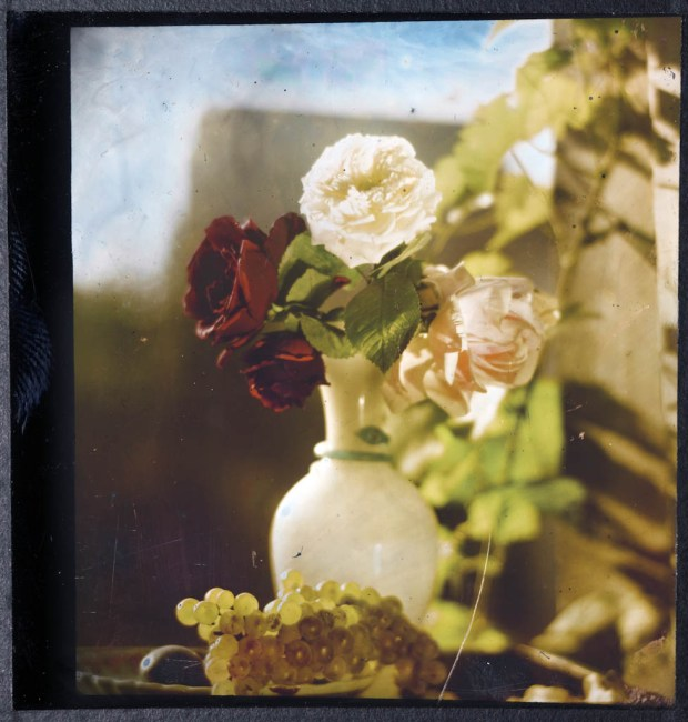 Lippmann_NatureMorte_1891-99__Collection_Musee_de_l_Elysee-3