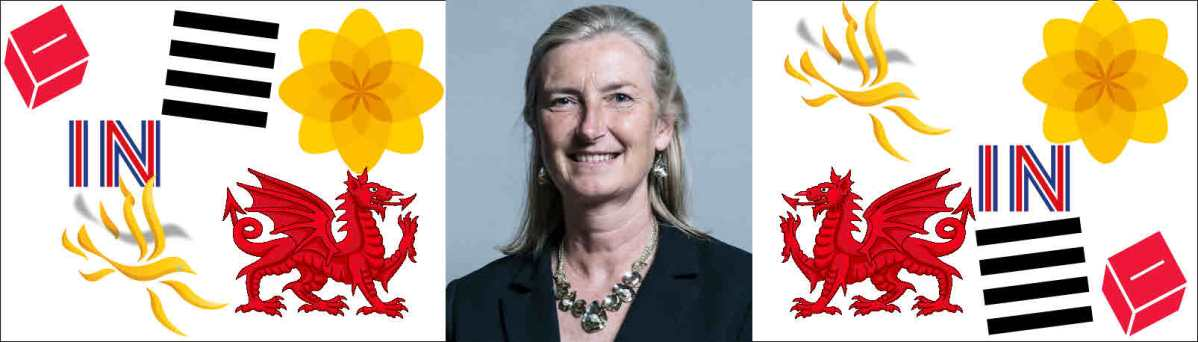Sarah Wollaston joins Plaid Cymru