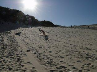 Sandboarding... Ca envoie !