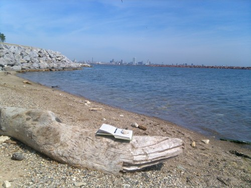 Milwaukee: Journal by Lake Michigan