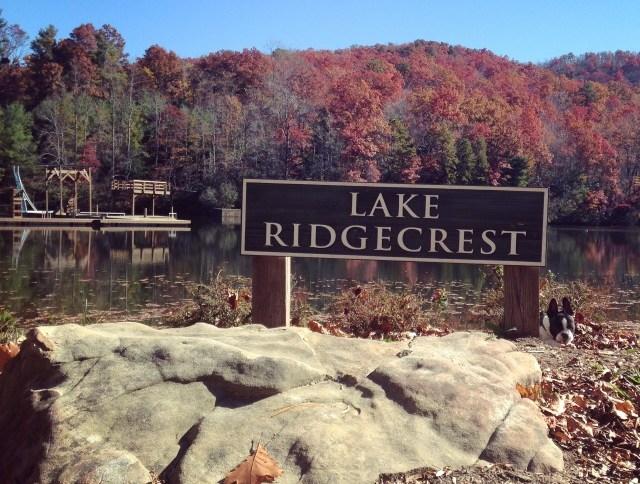 #RunningTo: Camp Ridgecrest, NC