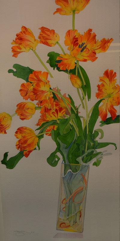 Bukovnik Watercolor