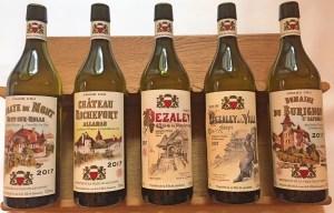 Réseau des «Great Wine Capitals»  — Lausanne pose sa candidature