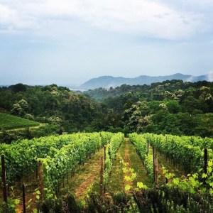 L'Alto Piemonte (Novare): l'«autre» Piémont