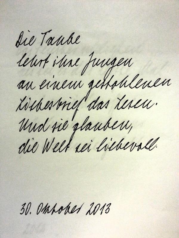 Ute Schlerath - Die Taube - 2013-11-10 16.35.41
