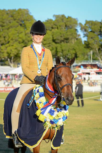 Marnie - Newcomer Hunter Pony of the Year