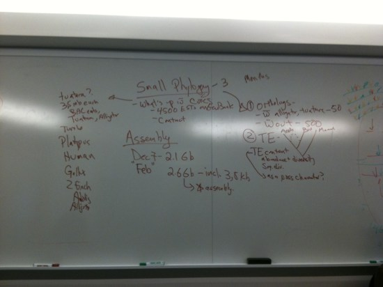 The brainstorming notes that started the process of writing this paper back in 2010.