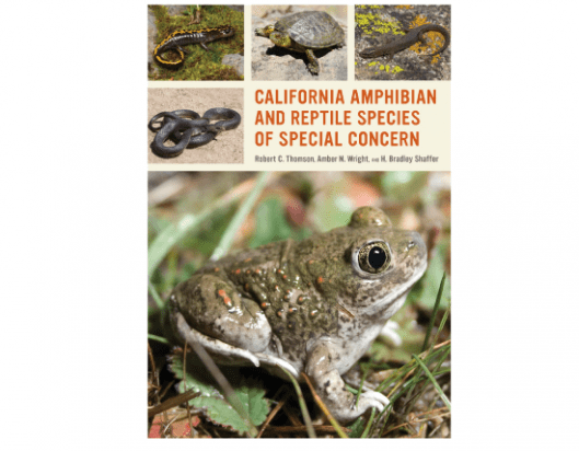 Amphibians and Reptile Species of Special Concern.