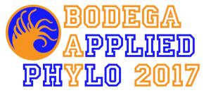 Bodega_Logo_2017