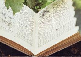 book FILEminimizer - Phương pháp viết đề cương, luận văn khoa học