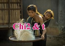 chi2 statistic t - Bảng thống kê Chi2 và t