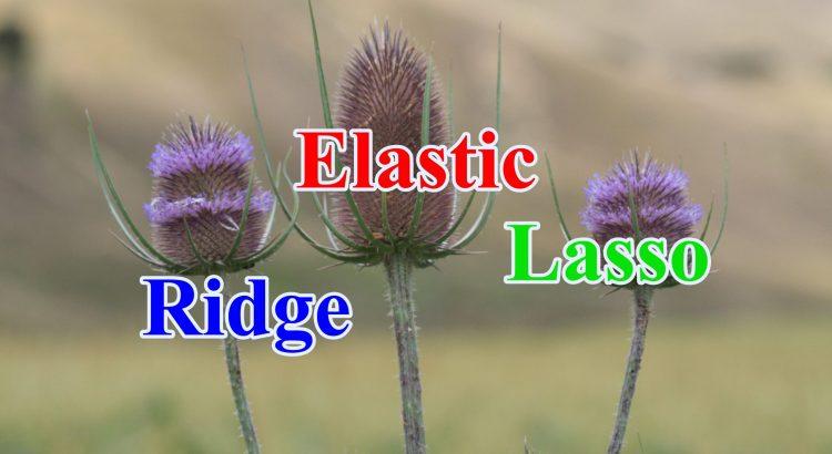 ridge elastic lasso scaled - hồi quy ridge ước lượng lasso tính elastic