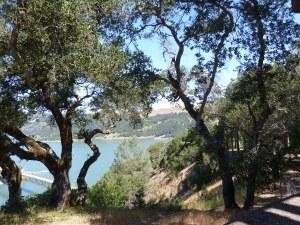 Lake Sonoma overlook