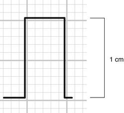 A310784_1_En_2_Fig2_HTML.jpg