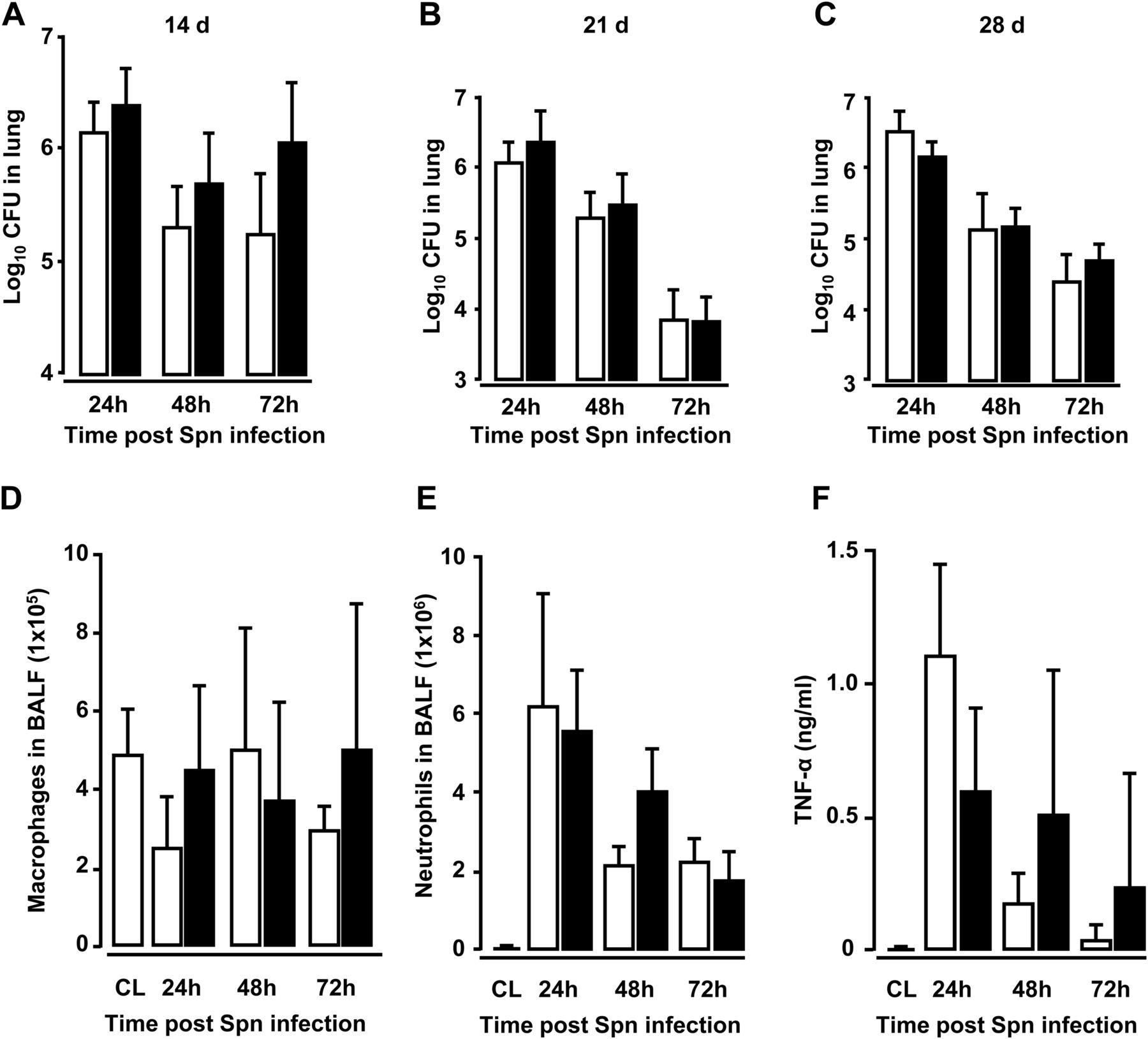 Streptococcus Pneumoniae Triggers Progression Of Pulmonary Fibrosis Through Pneumolysin