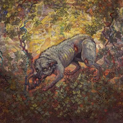 Pyrrhon – What Passes For Survival Album