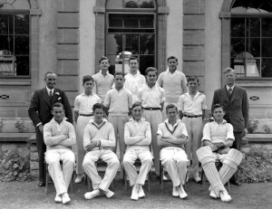 Cricket undated 14