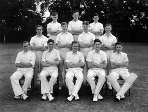 Cricket undated 5