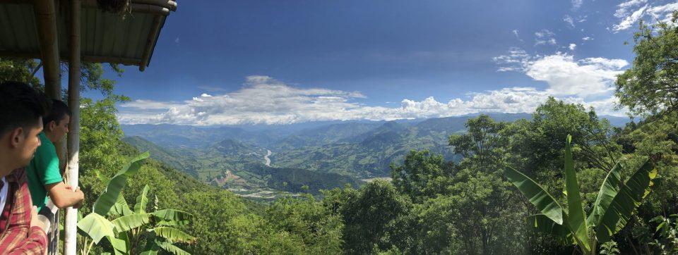 Colombian coffee farm (2)