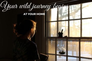 woman-at-a-window-from-healthy-interiors-to-a-balnced-life-thoselondonchicks