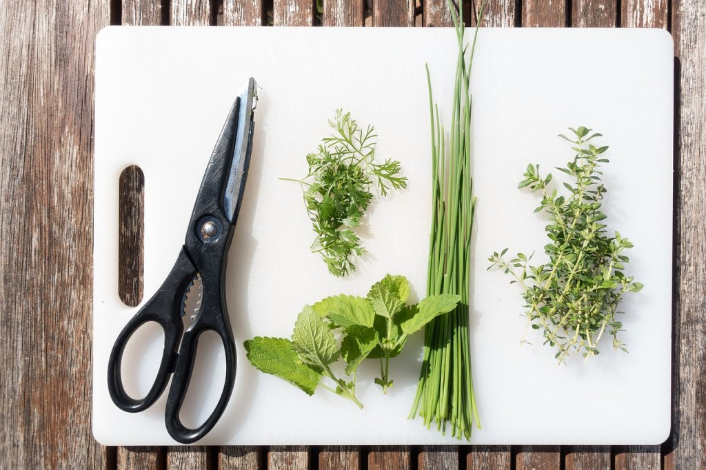 cooking-herbs-cutting