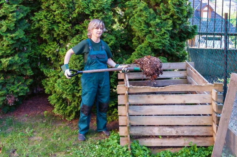 What-not-to-put-on-the-compost-pile-thoselondonchicks