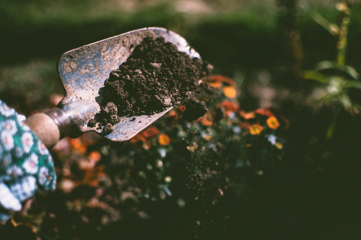 gardening-compost-pile-for-beginners