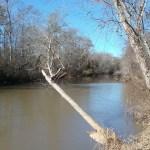Tawaliga River