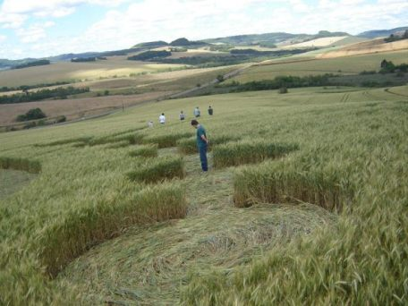 ipuaçu-crop-circle