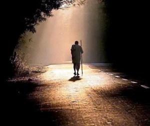 caminho-da-luz