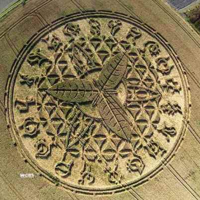 crop-circle-corey-goode