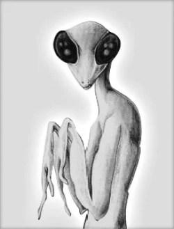 grey-mantid-alien