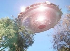 ufo-ovni-arvores