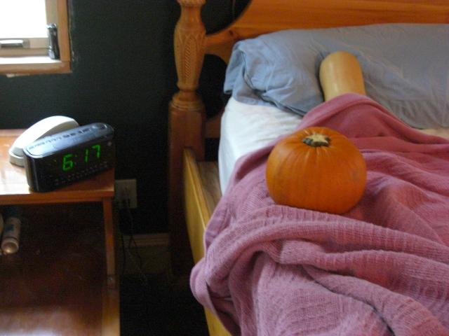 Squash and Pumpkin wake up early.