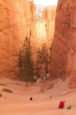 Bryce Canyon - Wall Street